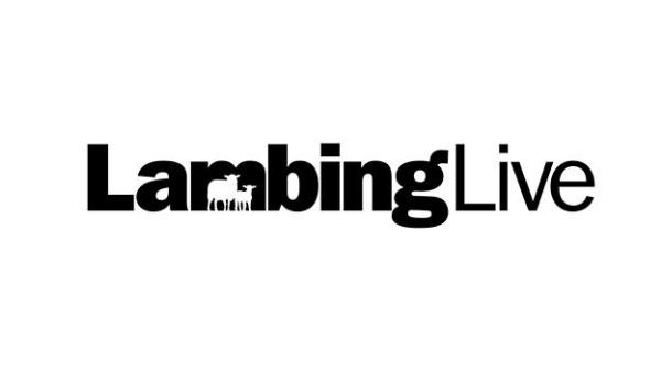 Camera Operator Lambing Live