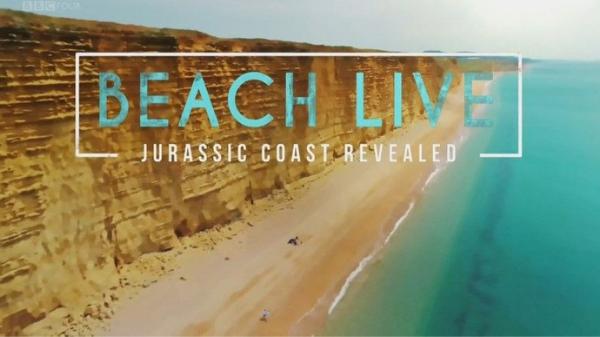 Camera Operator Beach Live